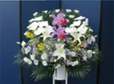 菊ミックス生花